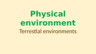 5B Physical environment