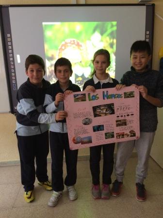 2016_12_Quinto A_Aprendizaje Cooperativo en CCNN 6