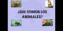 INFANTIL 3 AÑOS B - ALIMENTACIÓN DE LOS ANIMALES