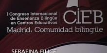 Mesa de comunicación: Activating a CBI approach in ESP University contexts