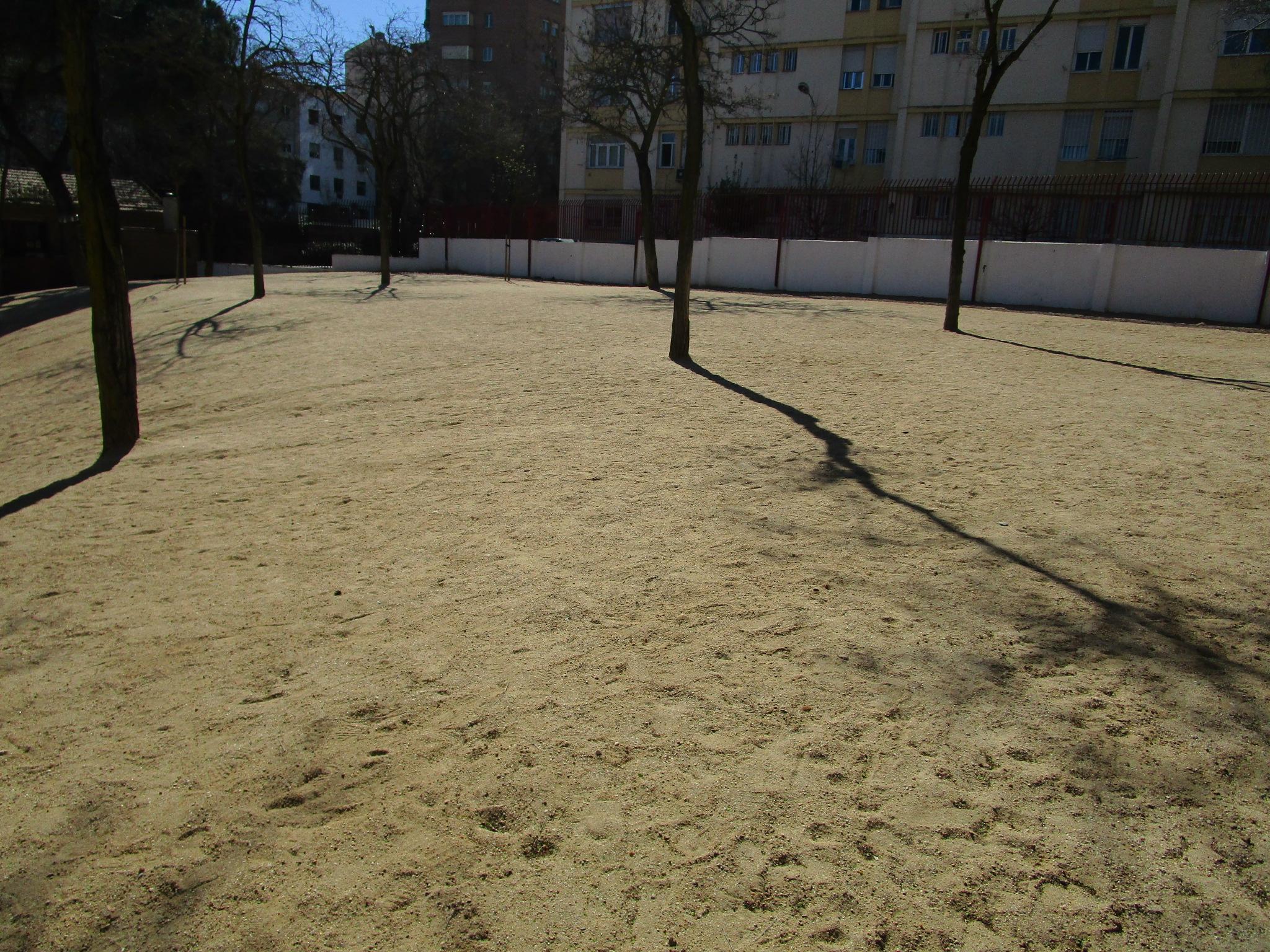 patio arena2