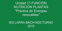 ENERGÍA RENOVABLE- BIOMASA