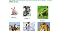"Tarea animales y comida<span class=""educational"" title=""Contenido educativo""><span class=""sr-av""> - Contenido educativo</span></span>"