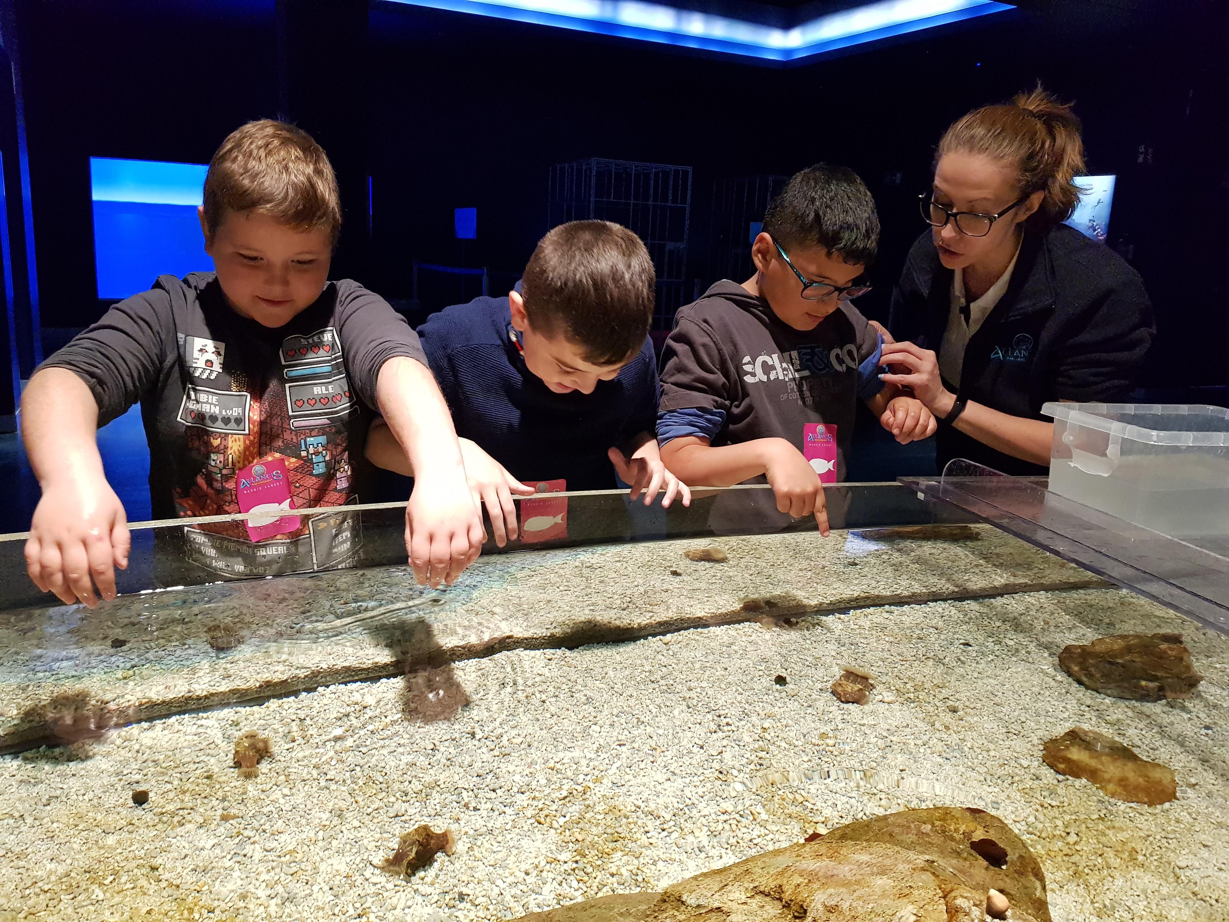Fotos Aquarium Xanadú 3ºB 12