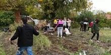 El huerto en otoño. CTV,  proyecto televisión del IES Miguel de Cervantes. Móstoles
