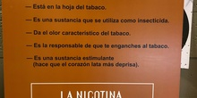 Lo que el tabaco esconde 12