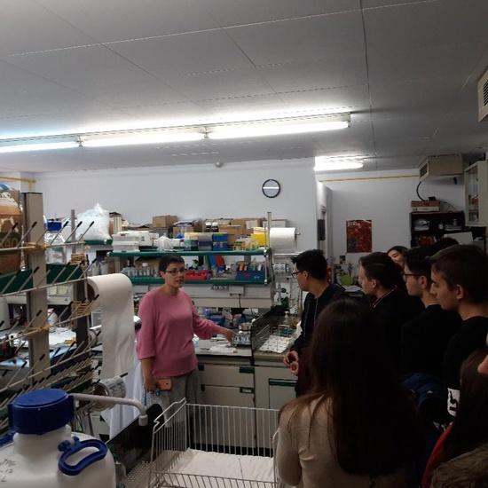 Alumnos del IES Neil Armstrong de Valdemoro en la Facultad de Biológicas. UCM. Semana de la Ciencia. Taller de bioquímica