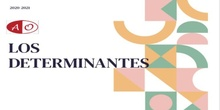 DETERMINANTES_6º