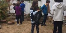 2018_11_CUARTO DISEÑANDO EL JARDIN DE LOS SENTIDOS_CEIP FDLR_LAS ROZAS 18