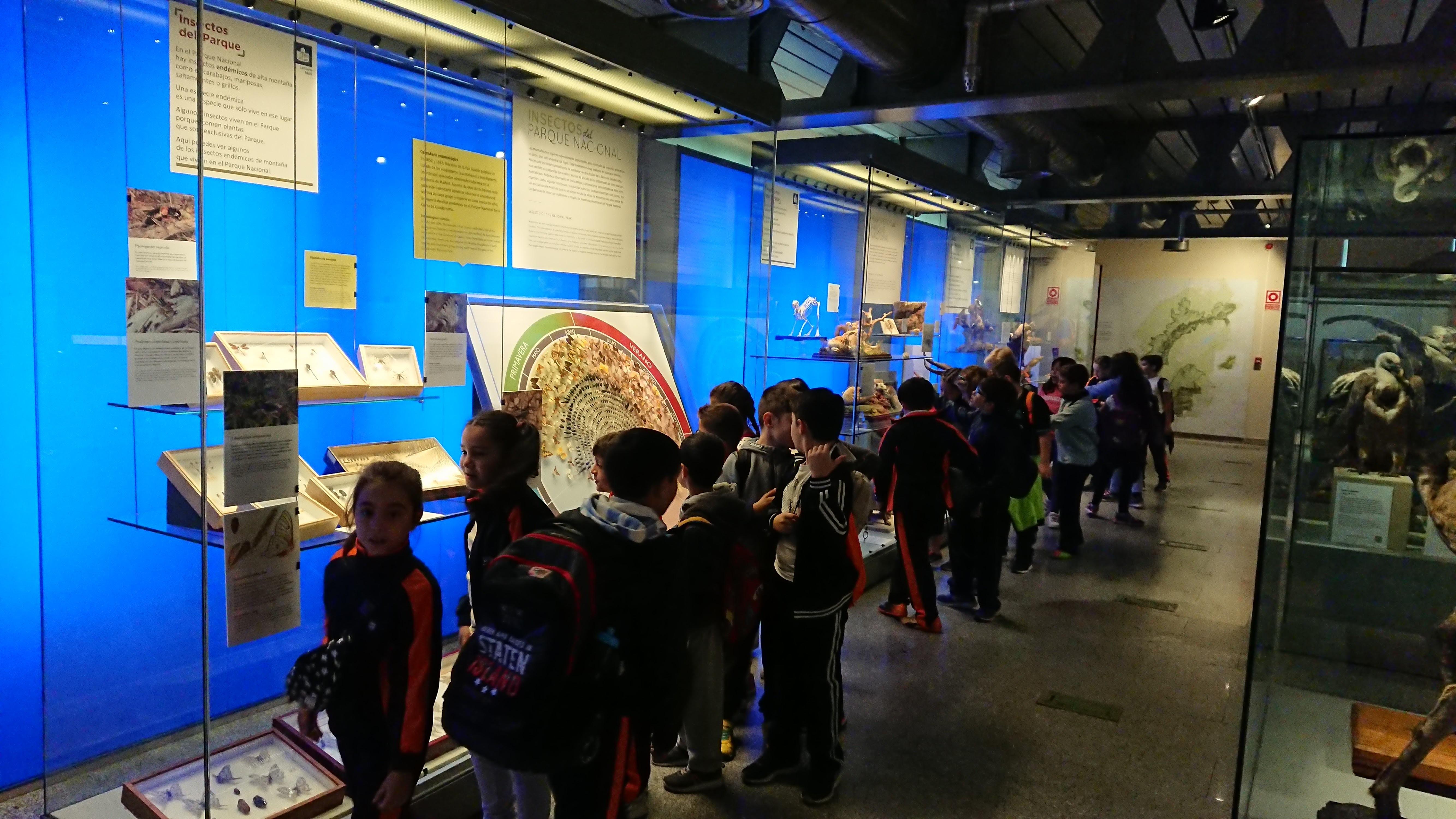 Excursión al museo de ciencias 4