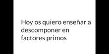 PRIMARIA_6º_DESCOMPONER EN FACTORES PRIMOS