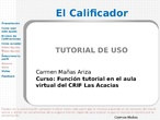 Manual de ayuda del uso del calificador