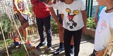 """2019_10_09_Cuarto """"estrena"""" el huerto_CEIP FDLR_Las Rozas 6"""