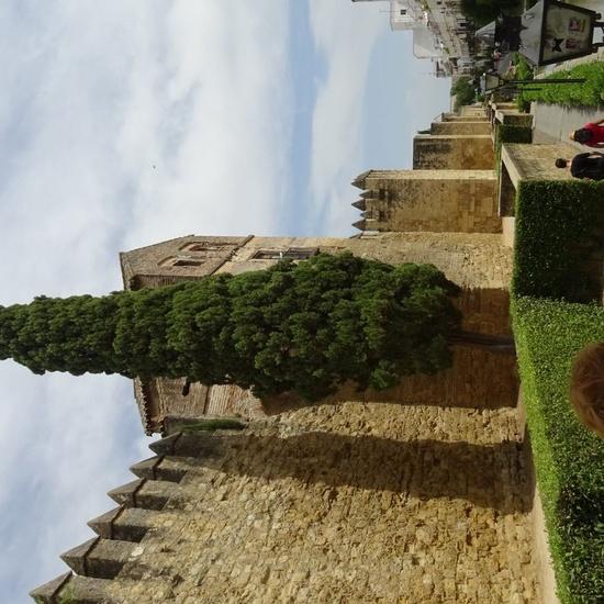 Córdoba 2019 (3)