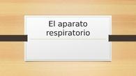 TALLER DE CIENCIAS - CIUDAD PEGASO - El aparato respiratorio
