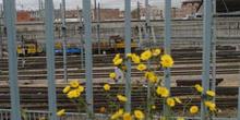 Vías férreas de la estación de Atocha, Madrid