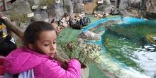 Visita al zoo 2019 10