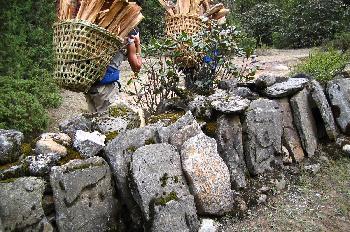 Gente cargando leña