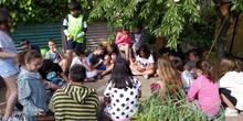 2019_06_07_Los alumnos de Quinto observan los insectos del huerto_CEIP FDLR_Las Rozas 12