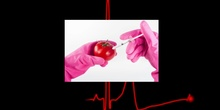 Manipulación de alimentos Paula Zapico