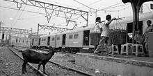 Vías del tren, Indonesia