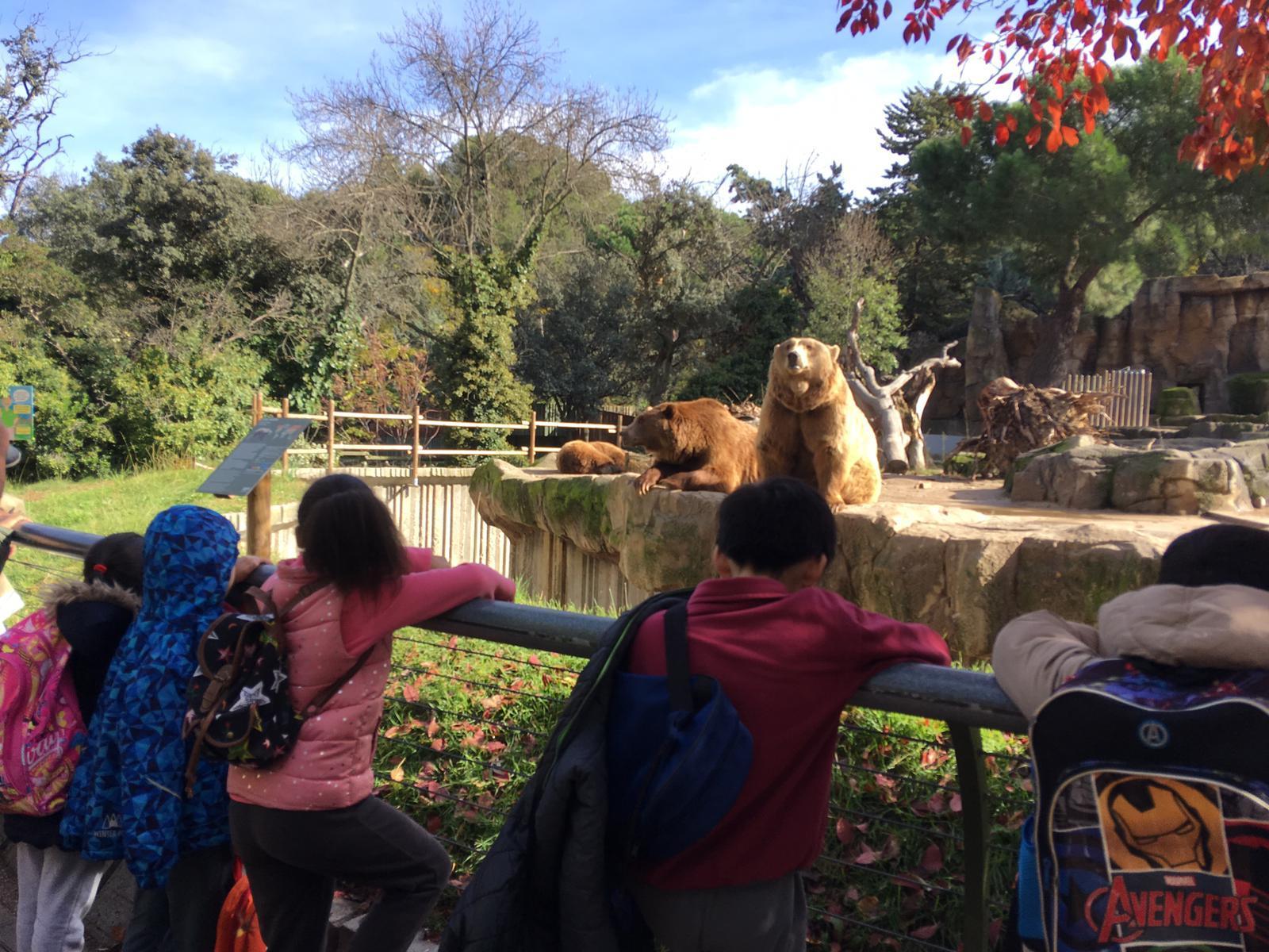 Excursión al zoo 5 años, 1º y 2º Luis Bello 23