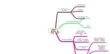 Redes: mapa mental tema 5