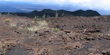 Campos de lava alrededor del Volcán Sierra negra en Isla Isabela
