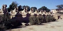 Avenida de esfinges, Karnak