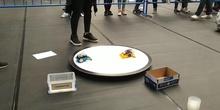 TERMINATOR (Robot Arduino sumo)