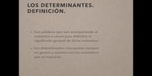 4º lengua Determinantes posesivos e indefinidos