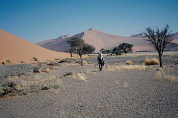 Caminando en el desierto, Namibia