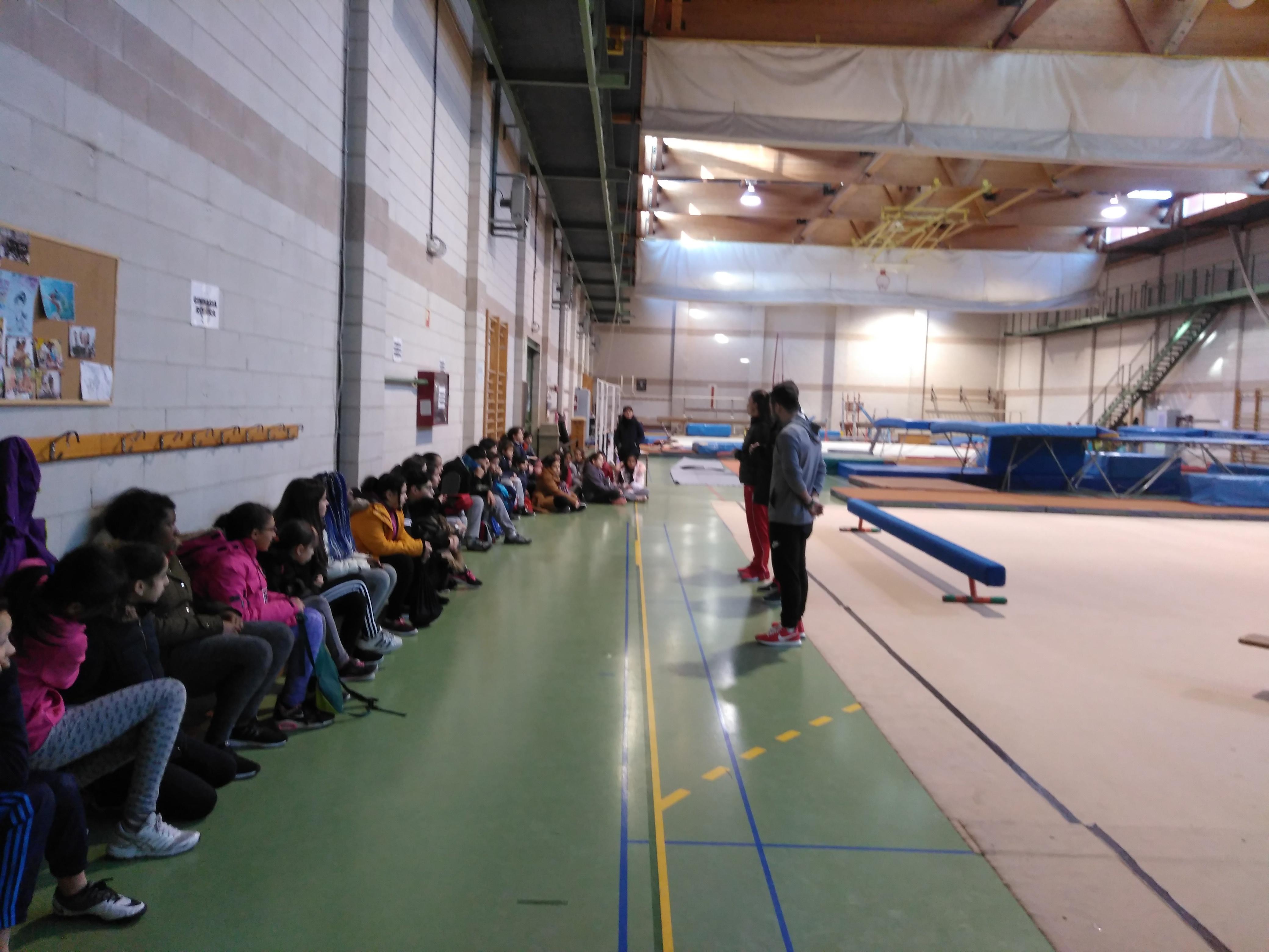 Gimnasia de trampolín 2