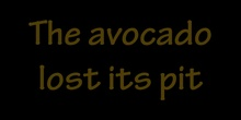 The avocado lost its pit