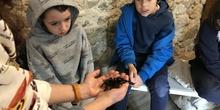 2020_02_27_3º visita Insectpark (5)_CEIP FDLR_Las Rozas 24