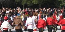 Carnavales 29