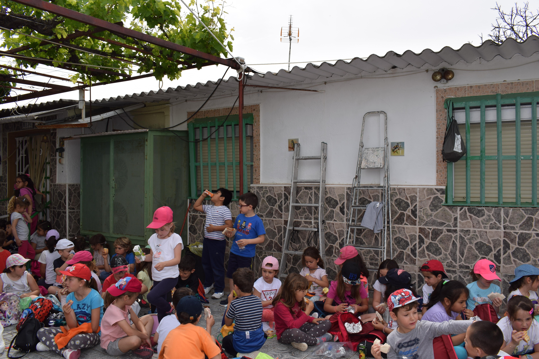 Siembra Huerta Balta 5 años 2018 41