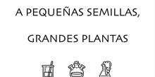 A pequeñas semillas, grandes plantas.