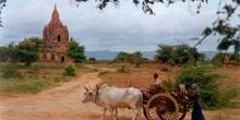 Campesinos en Myanmar