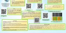 Genealogía del Panda