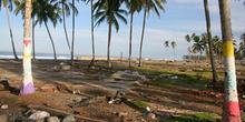 Zócalos de casas y palmeras pintadas, Melaboh, Sumatra, Indonesi