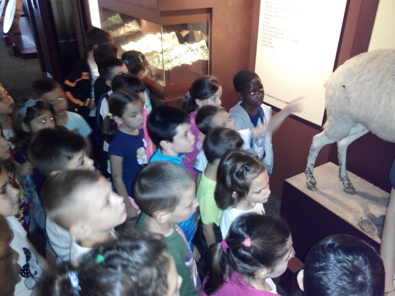 Visita a la exposición El Bosque. 1º 2º Primaria. CEIP Pinocho. 2016/17 25