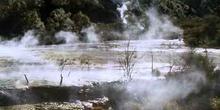 Valle geotérmico de waimangu en Rotorua, Nueva Zelanda
