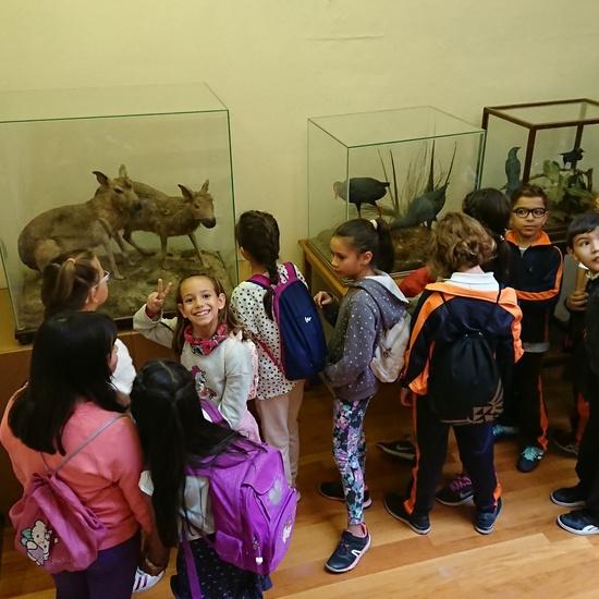 Excursión al museo de ciencias 6
