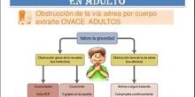 Presentación de obstrucción de vía aérea en adultos