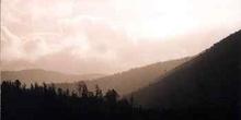 Bruma y bosque tropical en los Alpes del Sur, Nueva Zelanda.