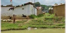 Proyecto solidario en Ranchi (India) del IES Antonio Machado