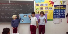 PRIMARIA 4º. VERTEBRATE PROJECTS. NATURAL SCIENCE. ACTIVIDADES