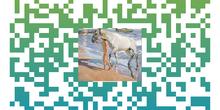 Colección de códigos QR para la exposición de Joaquín Sorolla CP Mirasierra 6