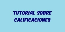TUTORIAL CALIFICADOR